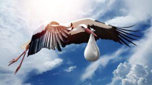 stork bringing baby